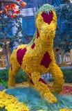 Bellagio Hotel Conservatory & Botanical Gardens Stock Image