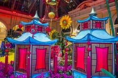 Bellagio hotelldrivhus & botaniska trädgårdar Royaltyfria Foton
