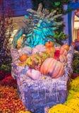 Bellagio Hotelserre & Botanische Tuinen Stock Afbeeldingen