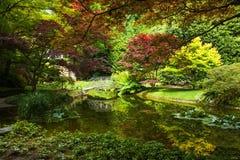 Bellagio miasto na Jeziornym Como, Włochy Lombardy region Włoszczyzna sławny punkt zwrotny, willi Melzi park Ogródów Botanicznych obrazy stock