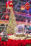 Bellagio ogródy botaniczni & Zdjęcie Stock