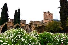 Bellapais Abbey Monastery fotos de stock royalty free
