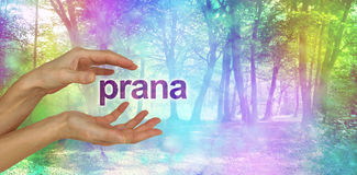 Belle énergie curative de Prana Images libres de droits