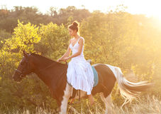 Belle équitation de femme sur un cheval Photos stock