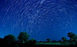 Belle étoile Image libre de droits
