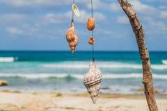 Belle île, plage d'Isla Mujeres, le Mexique Images stock