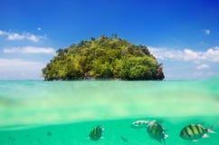 Belle île tropicale et monde sous-marin de mer Images libres de droits