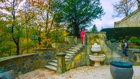 Belle allée romantique en parc avec les arbres colorés et la lumière du soleil fond de nature d'automne - Bilder photographie stock
