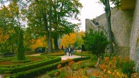 Belle allée romantique en parc avec les arbres colorés et la lumière du soleil fond de nature d'automne - Bilder images libres de droits