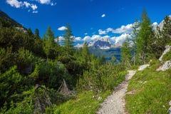 Belle alpi della dolomia Fotografie Stock