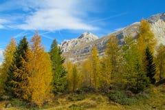 Belle alpi delle dolomia in autunno Immagini Stock Libere da Diritti