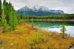 Belle alte montagne delle Montagne Rocciose canadesi che riflettono in un lago alpino lungo la strada panoramica di Icefields fra Fotografie Stock Libere da Diritti