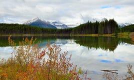 Belle alte montagne delle Montagne Rocciose canadesi che riflettono in un lago alpino lungo la strada panoramica di Icefields fra Fotografia Stock