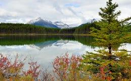 Belle alte montagne delle Montagne Rocciose canadesi che riflettono in un lago alpino lungo la strada panoramica di Icefields fra Fotografia Stock Libera da Diritti
