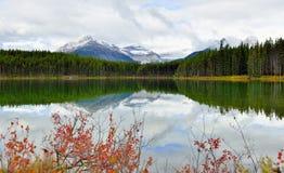 Belle alte montagne delle Montagne Rocciose canadesi che riflettono in un lago alpino lungo la strada panoramica di Icefields fra Immagini Stock