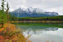 Belle alte montagne delle Montagne Rocciose canadesi che riflettono in un lago alpino lungo la strada panoramica di Icefields fra Immagine Stock