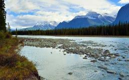 Belle alte montagne delle Montagne Rocciose canadesi e di un fiume alpino lungo la strada panoramica di Icefields fra Banff ed il Immagini Stock Libere da Diritti