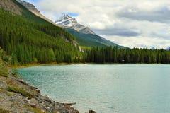 Belle alte montagne delle Montagne Rocciose canadesi e di un fiume alpino lungo la strada panoramica di Icefields fra Banff ed il Immagine Stock Libera da Diritti
