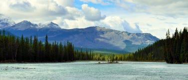 Belle alte montagne delle Montagne Rocciose canadesi e di un fiume alpino lungo la strada panoramica di Icefields fra Banff ed il Fotografia Stock Libera da Diritti