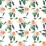 Belle aquarelle multicolore de modèle de roseraie Image libre de droits