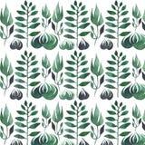 Belle aquarelle sans couture de modèle d'herbe verte Image stock