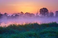 Belle aube au-dessus de la rivière de Narew, Pologne Réserve naturelle Photos stock