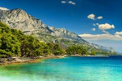 Belle baia e spiaggia, Brela, Makarska riviera, Dalmazia, Croazia, Europa Fotografia Stock Libera da Diritti