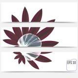 Belle baisse de rosée sur une feuille Belles bannières réglées Rêveur doux Image stock