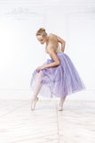 Belle ballerine de jeune femme Images libres de droits