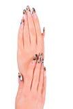 Belle barrette femminili con il manicure Fotografie Stock