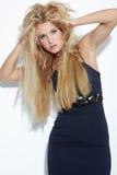 Belle blonde aux cheveux longs Images stock
