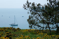 belle Brittany en France ile mer Obrazy Royalty Free