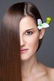 Belle brune avec de longs cheveux droits Image libre de droits