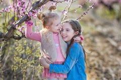 Belle brune habillée élégante mignonne et soeurs blondes de filles se tenant sur un champ de jeune pêcher de ressort avec le rose Image stock
