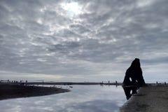 Belle Côte Pacifique en parc national olympique images libres de droits