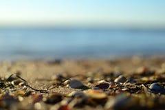Belle côte de la mer d'Azov photos libres de droits