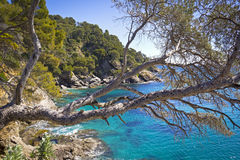 belle côte méditerranéenne photo libre de droits