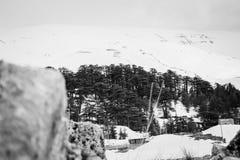 Belle capture d'une montagne couverte de neige images libres de droits