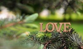 Belle carte avec les lettres en bois avec l'amour des textes de mot sur a Photos libres de droits