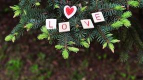 Belle carte avec les lettres en bois avec un amour des textes de mot Photos stock
