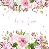 Belle carte de mariage, invitation avec des roses et pivoine Photos libres de droits
