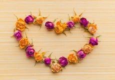 Belle carte de voeux de Valentine avec le rose et le jaune secs Images stock