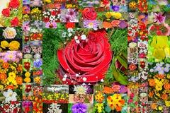 Belle carte postale de collage de fleurs Photos libres de droits