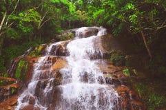 Belle cascade à écriture ligne par ligne au milieu de la forêt Photos stock