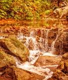 Belle cascade à écriture ligne par ligne dans la forêt Images stock