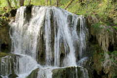 Belle cascade à écriture ligne par ligne dans la forêt Photos libres de droits
