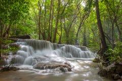 Belle cascade à écriture ligne par ligne dans une forêt Image libre de droits