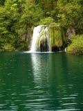 Belle cascade à écriture ligne par ligne de forêt Photo stock
