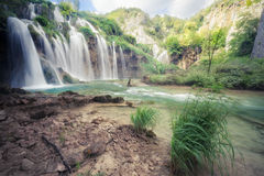 Belle cascade à écriture ligne par ligne tropicale Image libre de droits