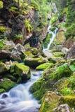 Belle cascade au milieu de forêt Photo stock